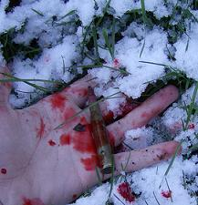 Death in snow